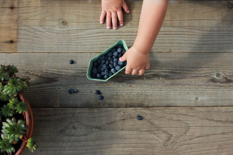 Toddler with blueberries - JoAnna Inks Sleep Solutions